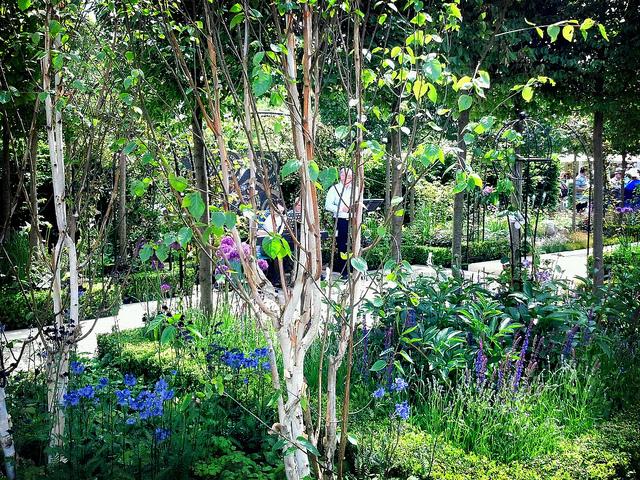 Award Winning Show Garden